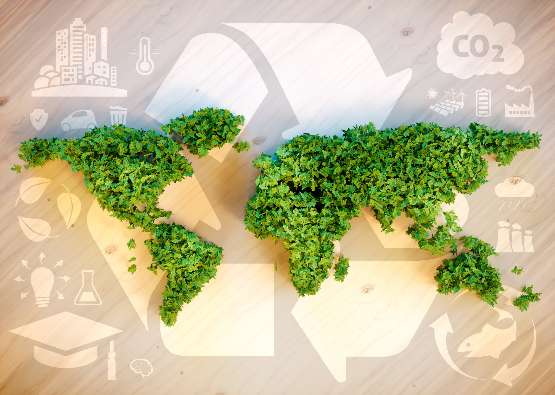 Sustainable business importance